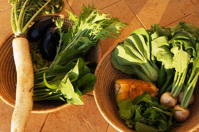 坂ノ途中がウガンダで販売する野菜セット