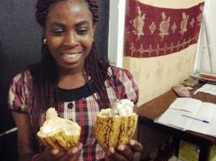 ガーナ産のカカオ。割ると中には白い種がぎっしり