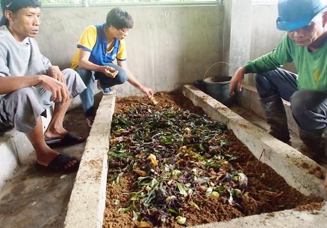 3年ぶりに作ることになったミミズ堆肥(2015年7月)