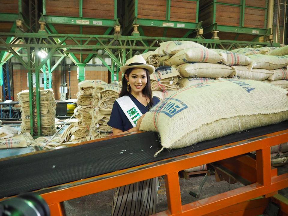 コーヒー農園を訪れる内田さん