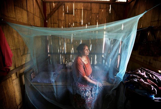 インドネシア・ヌサトゥンガラ州の民家。蚊帳はマラリアへの感染を予防する手段のひとつ