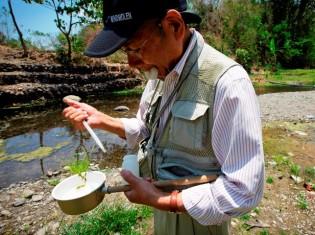 高木正洋・長崎大学名誉教授。専門は蚊の生態学。世界保健機関(WHO)ではデング熱媒介蚊対策、国際協力機構(JICA)ではマラリア媒介蚊対策などに従事した経歴をもつ