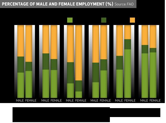 2-employment