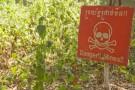 カンボジアの地雷除去活動とUberの意外な共通点、マーケティングの視点から考察してみた