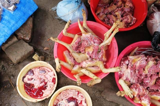 インド・ナガランド州最大の都市ディマプールの中心部で売られる犬肉