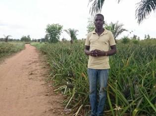 パイナップル農家のオジュさん(ベナン・コトヌー郊外のパイナップル畑で撮影)