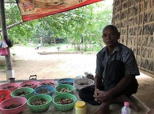 診療所で薬草の整理をしているジェク・ソムさん。薬を調合するための50種類以上の薬草が置かれていた(カンボジア・シェムリアップ郊外)