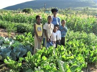 南アフリカで孫と暮らすノピリシレさん。「畑を始めて3カ月。新鮮な野菜を毎日食べられるので、孫も私も元気になった。交通費をかけて町に買い物に行かなくて済む。食べ物が値上がりしても、その影響を受けないから安心」と嬉しそうに語る
