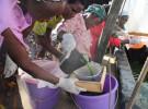 スピルリナを作るのは、ザンビアの農村の女性グループ。異物の混入がないかどうか品質を検査しているところ(提供:アライアンス・フォーラム財団)