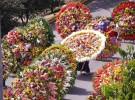花祭りのパレードで使われるシジェタ。デザインはひとつひとつ異なる