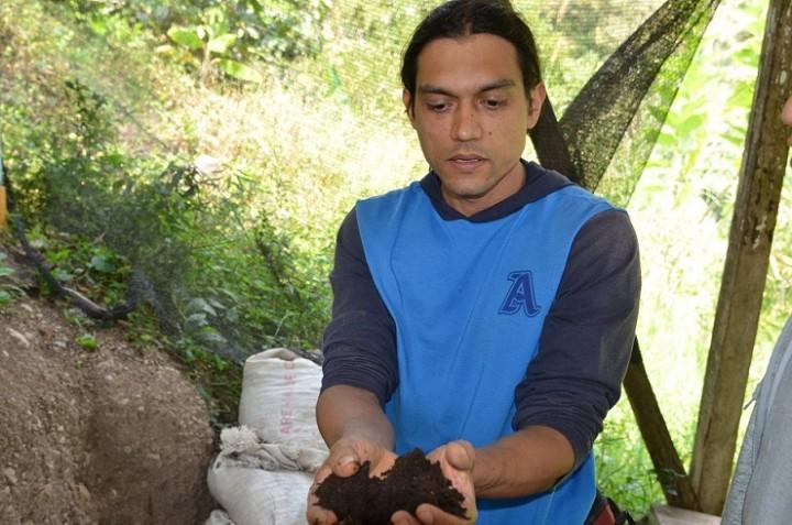 土の中にミミズを住まわせ、ふんを自然肥料として養分の高い土を作っている