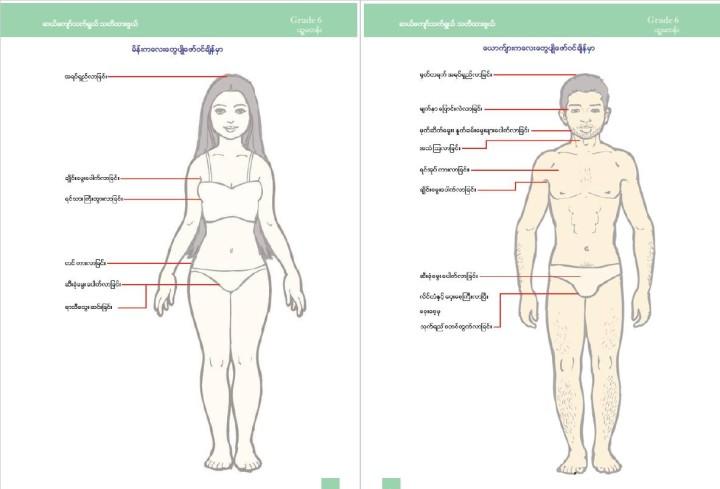 性教育は「ライフスキル」という科目の中で扱われる。6年生(11歳)の教科書は、第2次性徴について説明。きわどい部分は下着で隠す