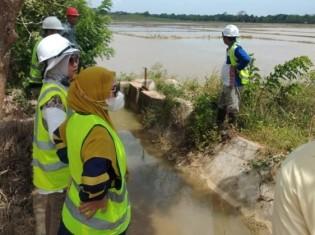 泥を含む川の水が流れ込み、収穫できなくなった水田を視察するインドネシア環境省の職員ら(インドネシア・スラウェシ島)。写真は、インドネシア環境フォーラム(WALHI)南東スラウェシが提供
