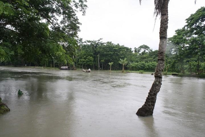破堤して浸水したハティア島の村(写真提供:日下部尚徳・立大准教授)